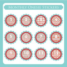 Monthly Onesie Sticker  *Aqua Cherry*