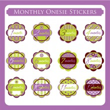 Monthly Onesie Sticker  *Purple Blossom*